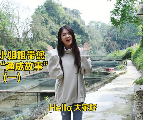 """通威小姐姐带您走进""""通威故事""""(一)"""