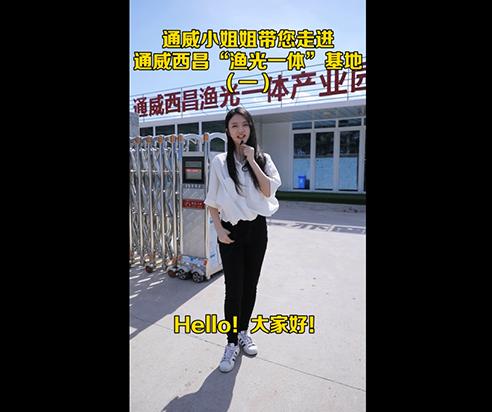 """通威小姐姐带您走进通威西昌""""渔光一体""""基地(一)"""