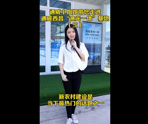 """通威小姐姐带您走进通威西昌""""渔光一体""""基地(三)"""
