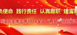 刘汉元代表出席十三届全国人大一次会议特别报道