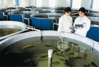 通威股份水产研究所